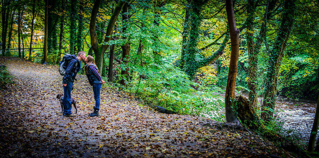 autumnal engagement shoot Derbyshire