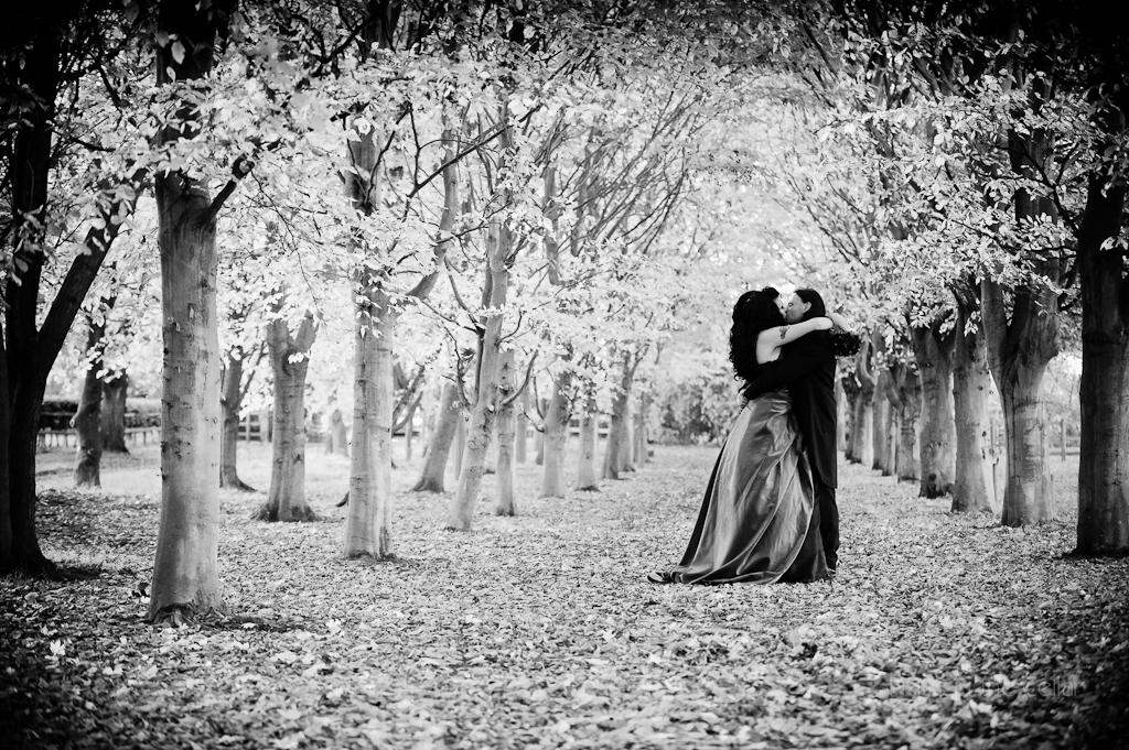 Halloween Wedding • 2012