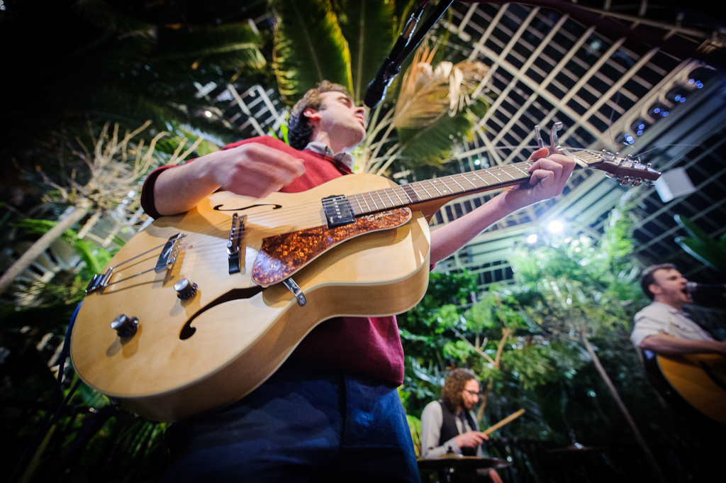guitarist in palm house