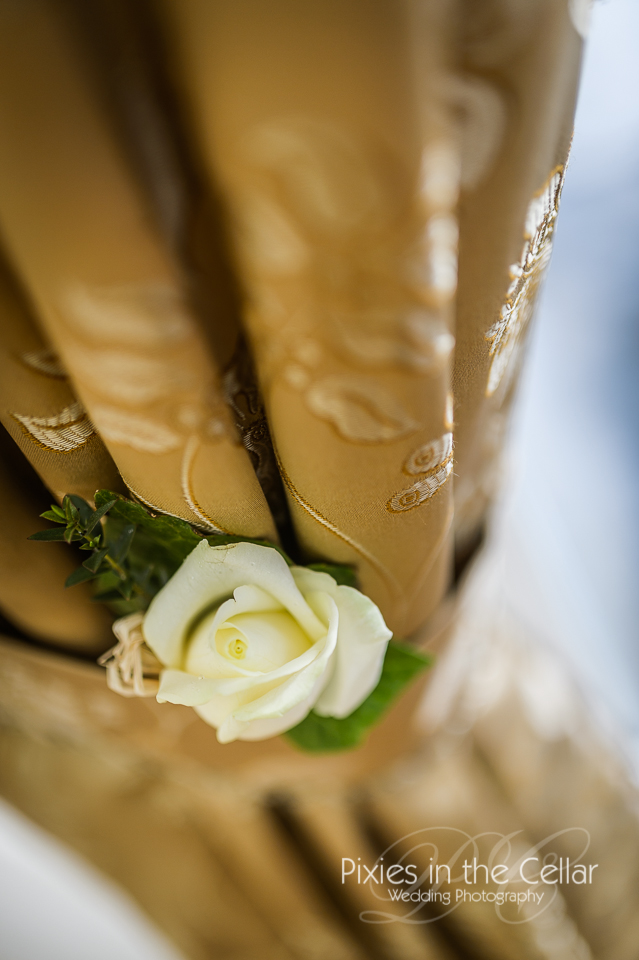 white rose in mustard curtain