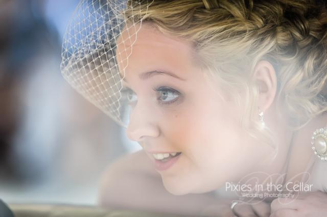 bride bird cage veil