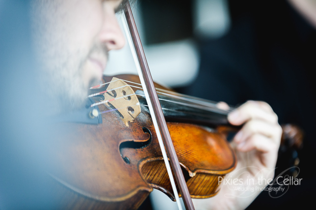 violinist close up