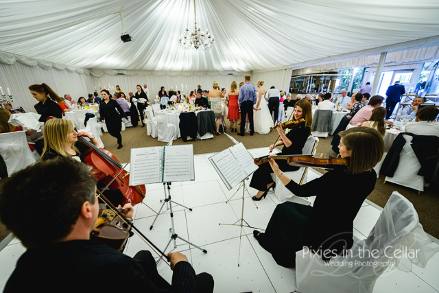 crow hill cottages wedding marquee reception