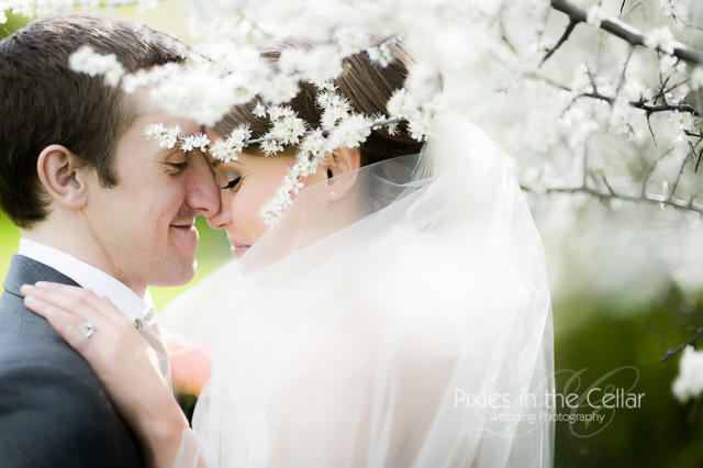 Spring wedding at Mythe Barn tree blossom