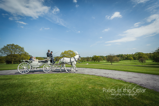wedding horse and carriage rudding park