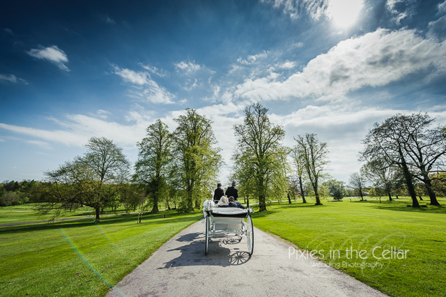 Rudding Park Hotel Wedding photography horse and carriage