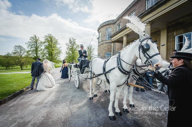 wedding horses harrogate