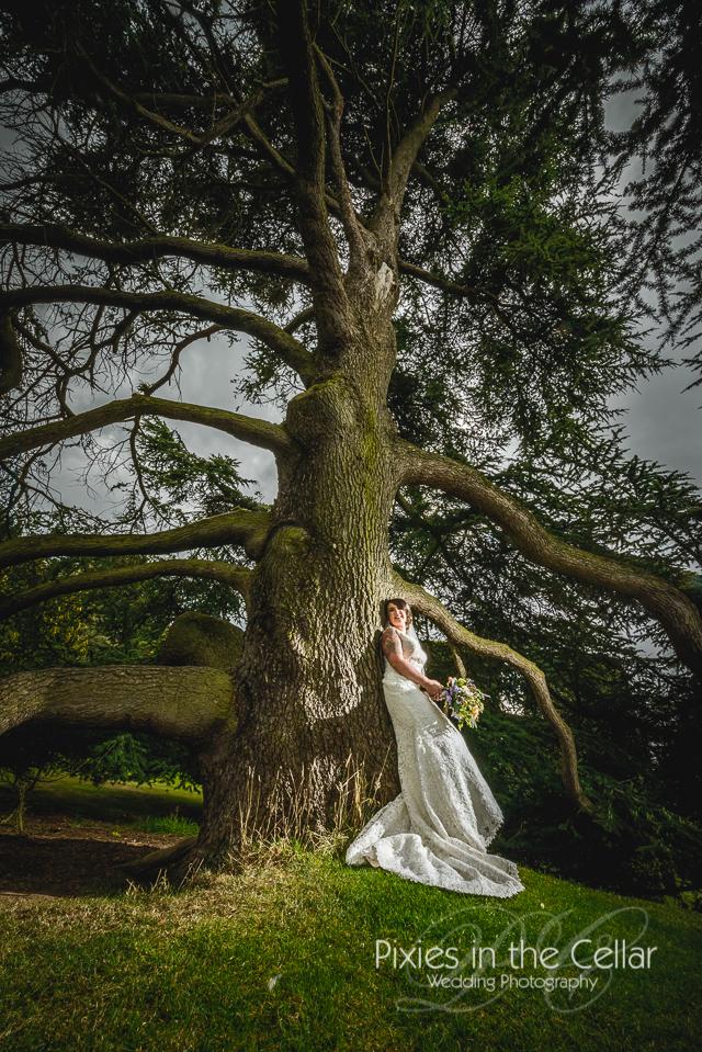 156-Arley-Hall-Wedding-Photography
