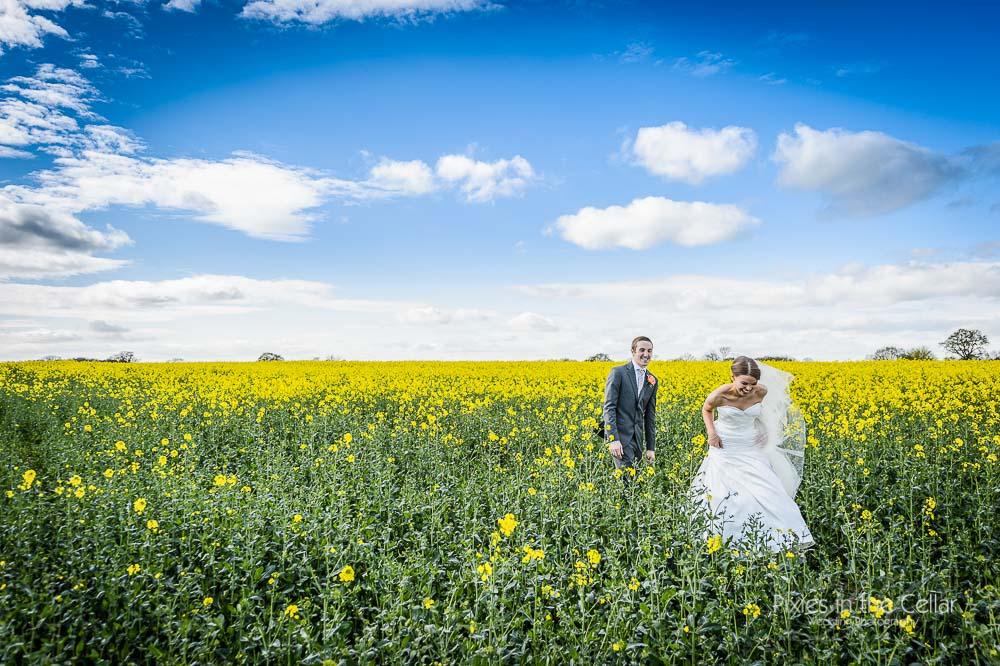 spring wedding yellow field