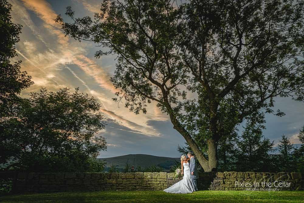 landscape-tree-manchester-wedding-photographer