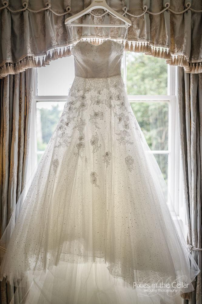 Provonias wedding dress