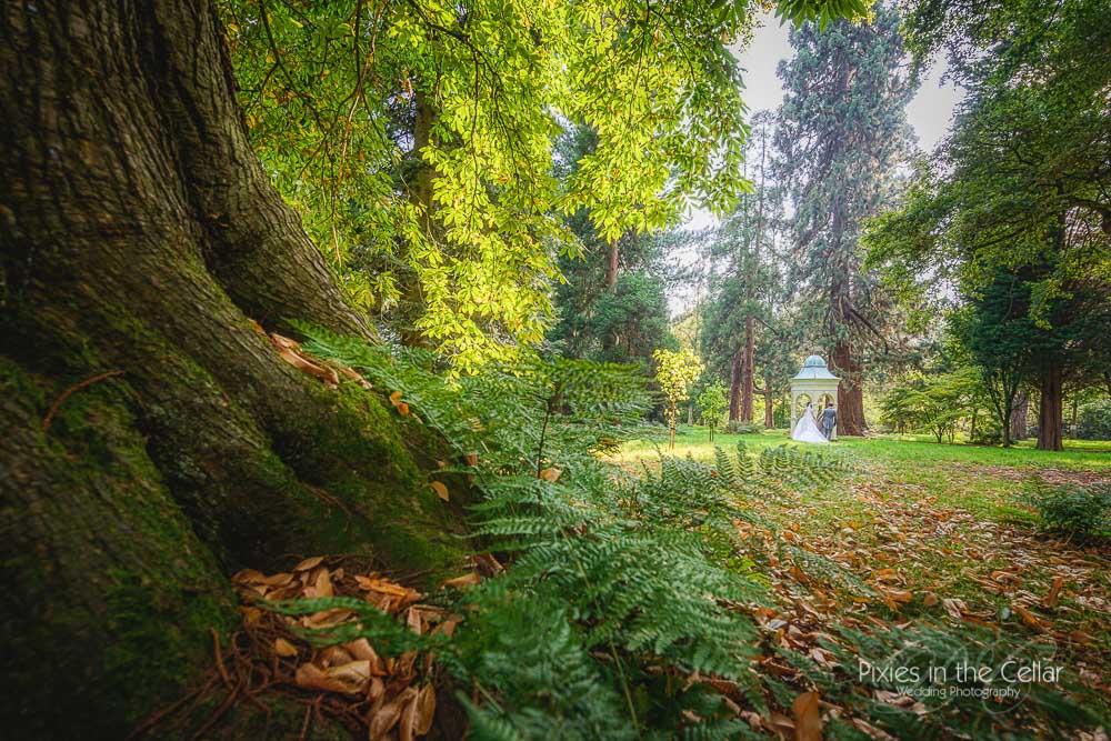 wedding woods photography cheshire