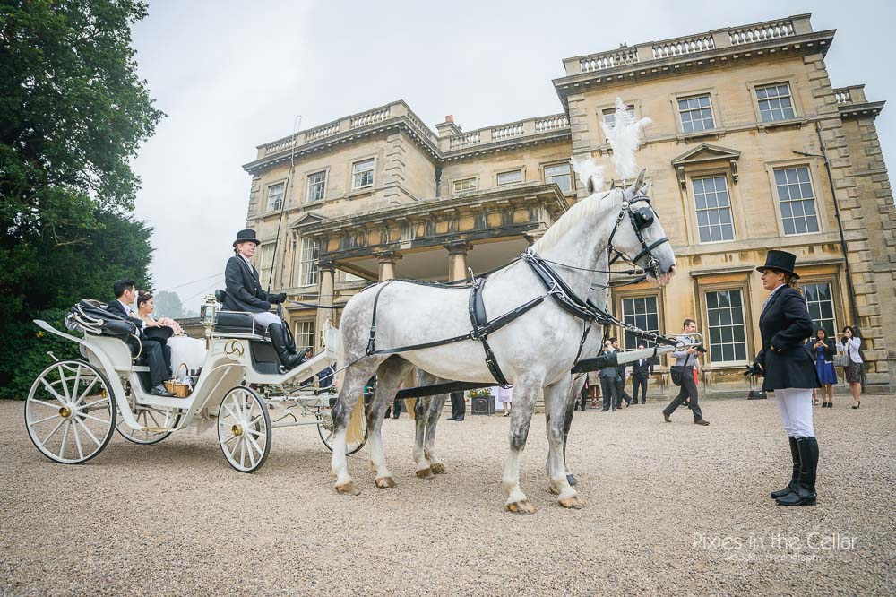 Prestwold Hall horse and carriage