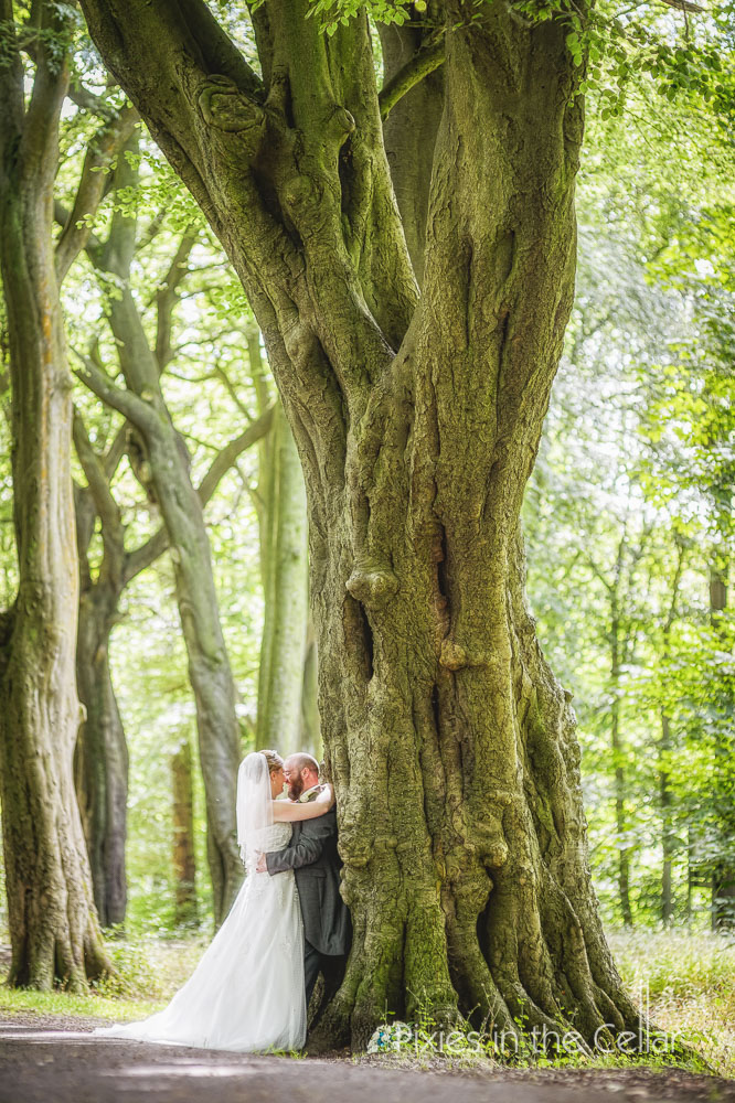 Haigh hall wedding woodland