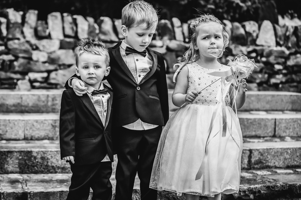 page boys in tuxedo and flowergirl