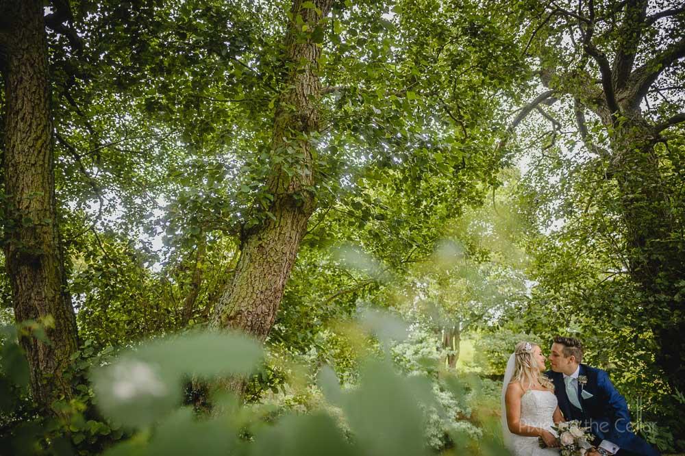 bride groom trees