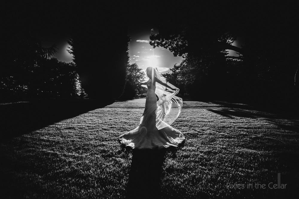bride long veil black white