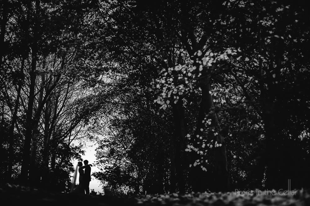 bride groom silhouette trees