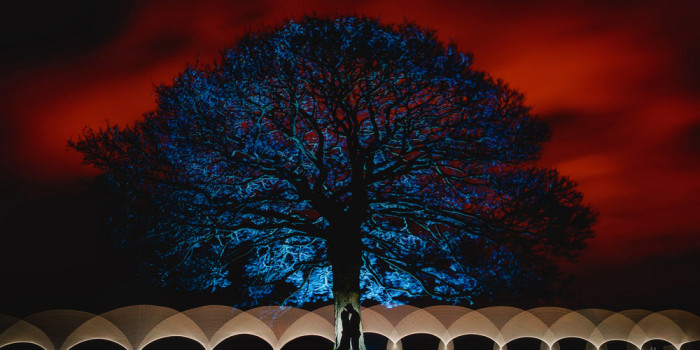 Heaton house farm winter wedding photography Lightpainting with tree and red sky
