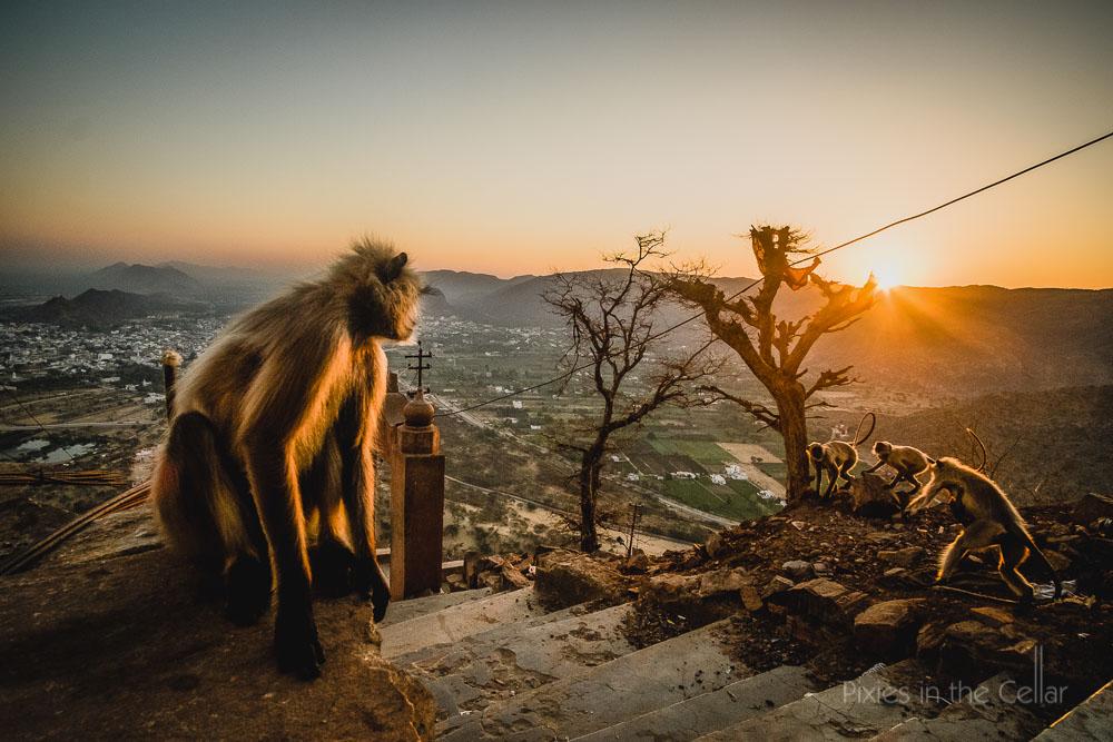 118-india-travel