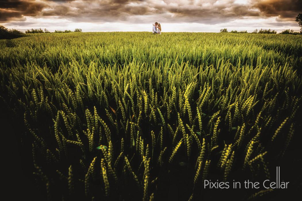 wheat field bride groom