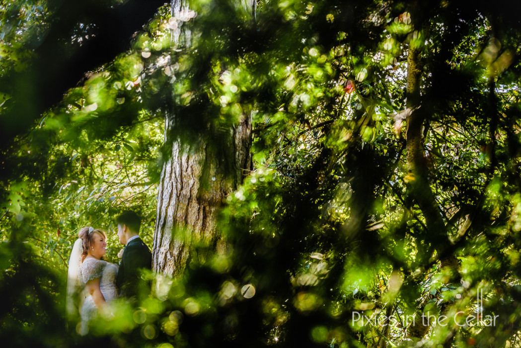 summer wedding through trees