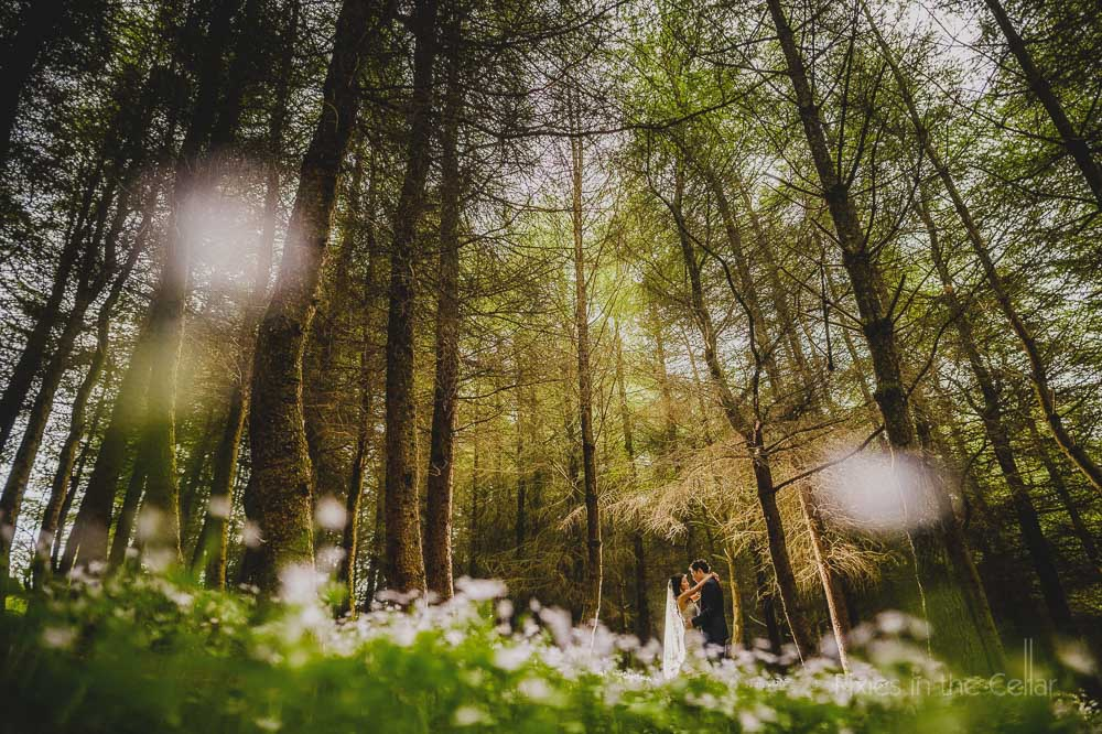 woodland wedding photo