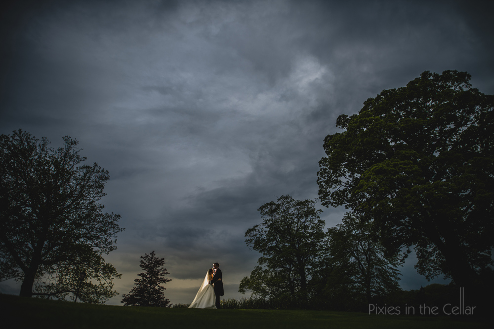 landscape wedding photography trees sky