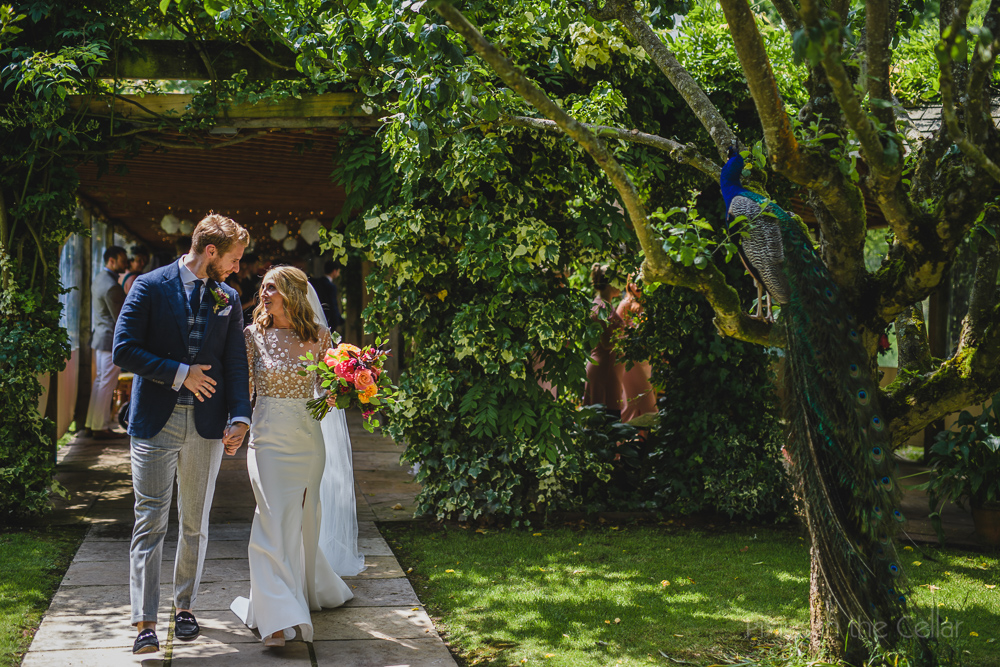 Maunsel House wedding photography peacocks