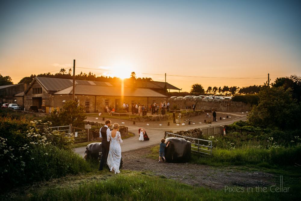 evening sun wedding photo fly on the wall approach