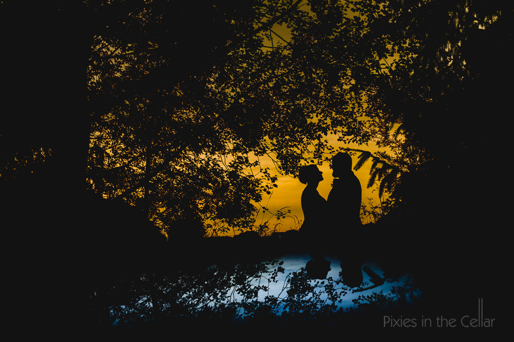best wedding silhouettes blue yellow