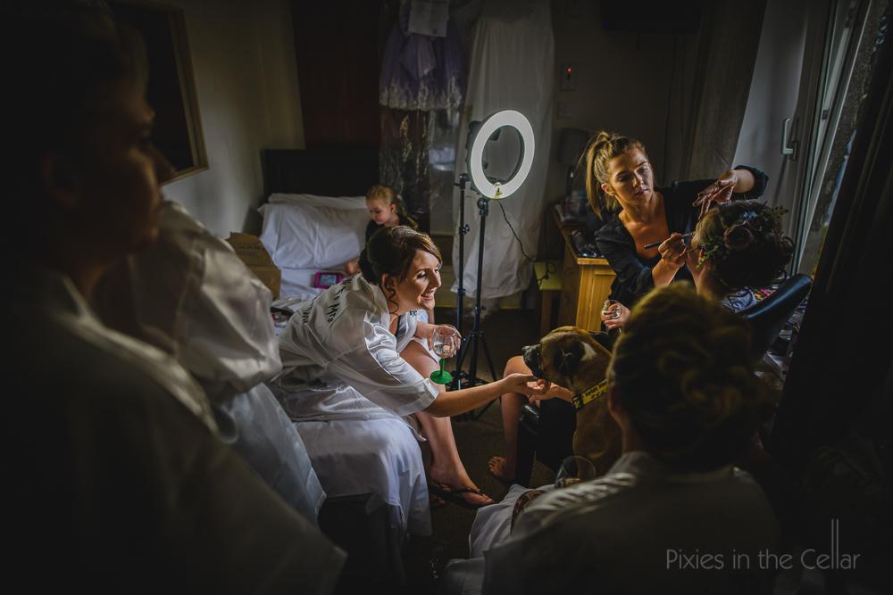 bridal prep chaos and dogs at weddings
