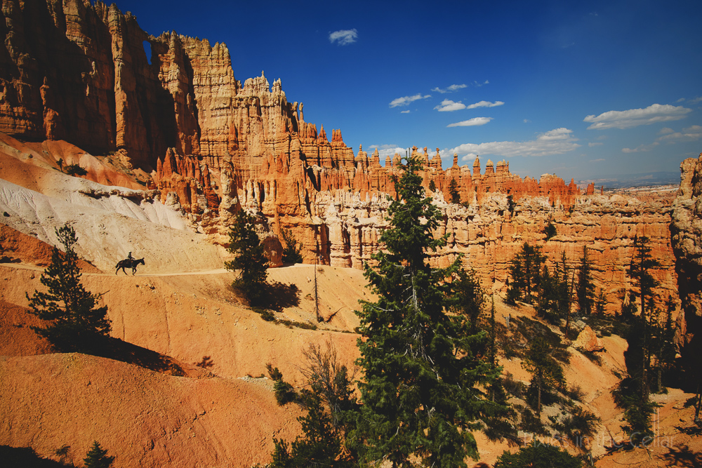 Bryce Canyon Mule trek