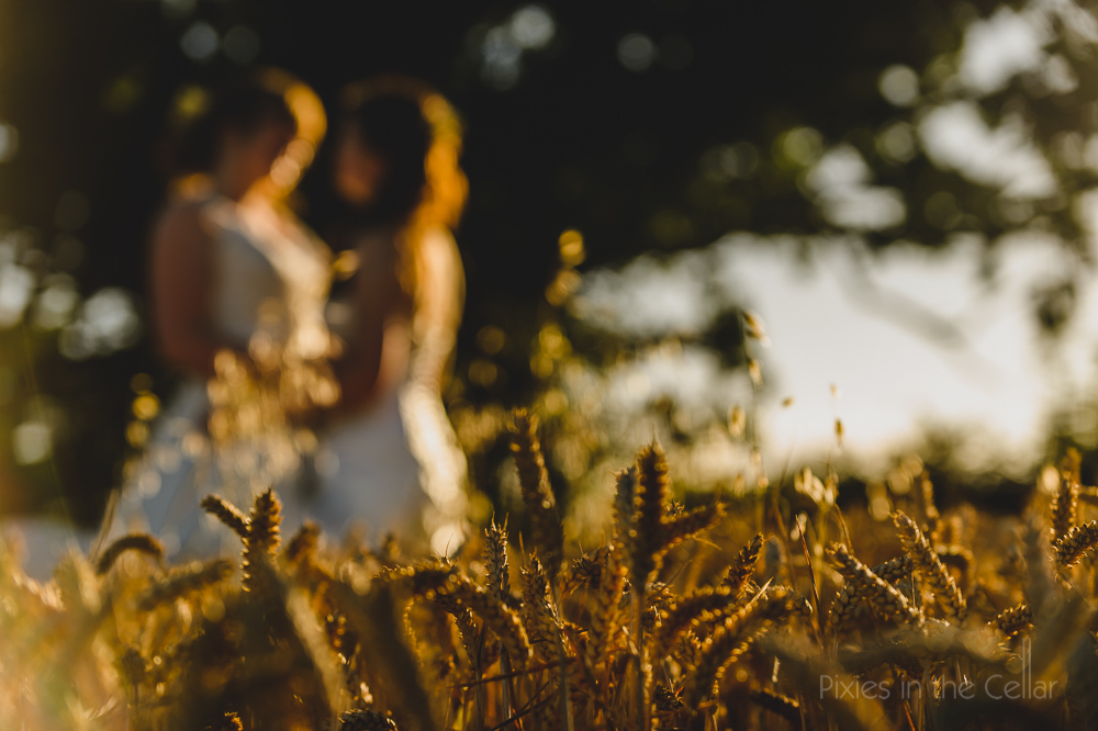 summer wedding photos