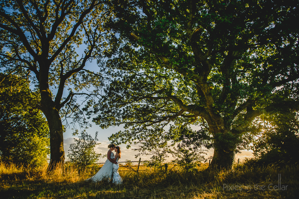 Two brides summer outdoor wedding photo