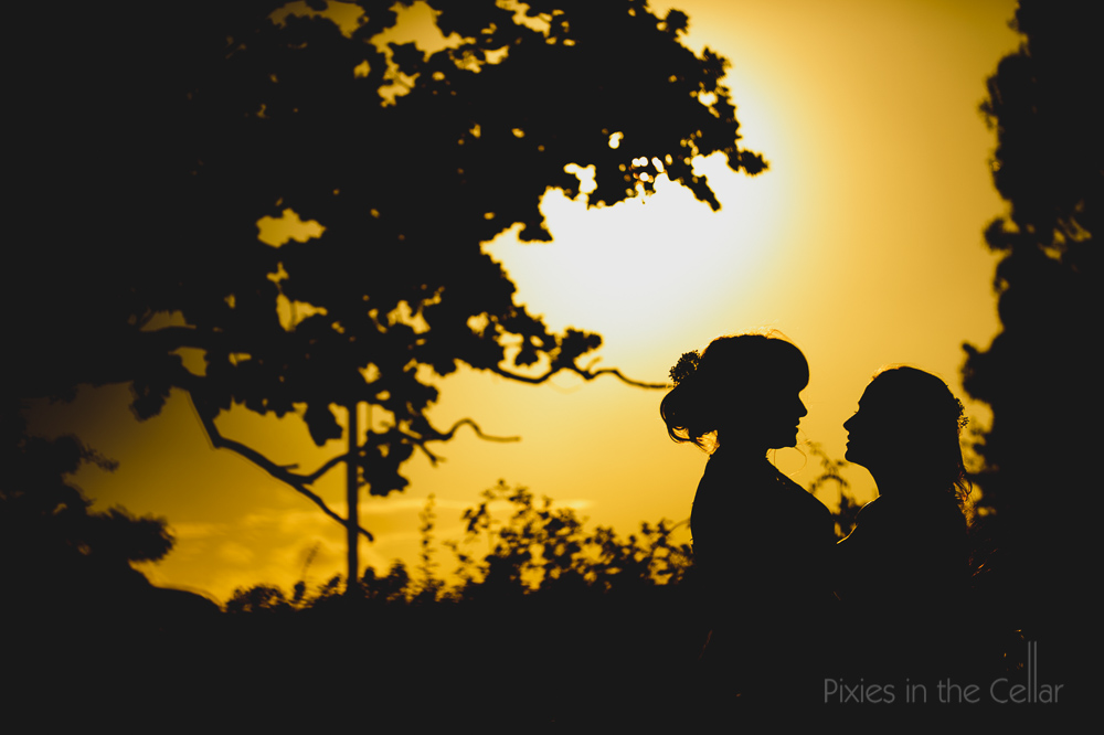 golden hour wedding photos two brides silhouette