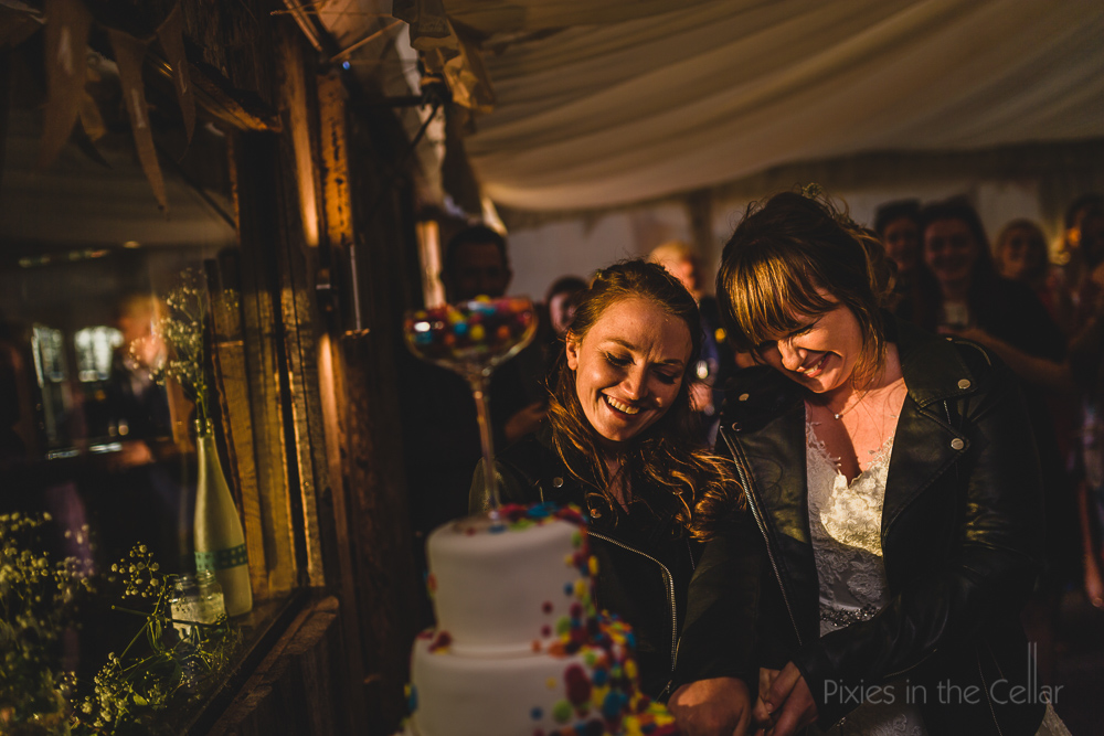 cake cutting golden hour rainbow LGBTQ wedding cake