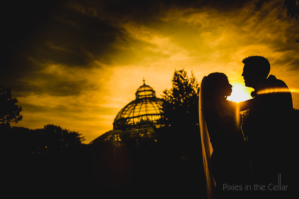 Sefton Palm House wedding photography silhouette
