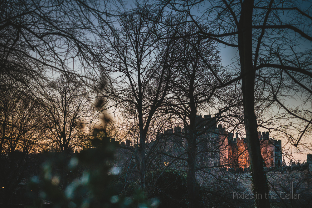 Alnwick Treehouse wedding photography winter castle