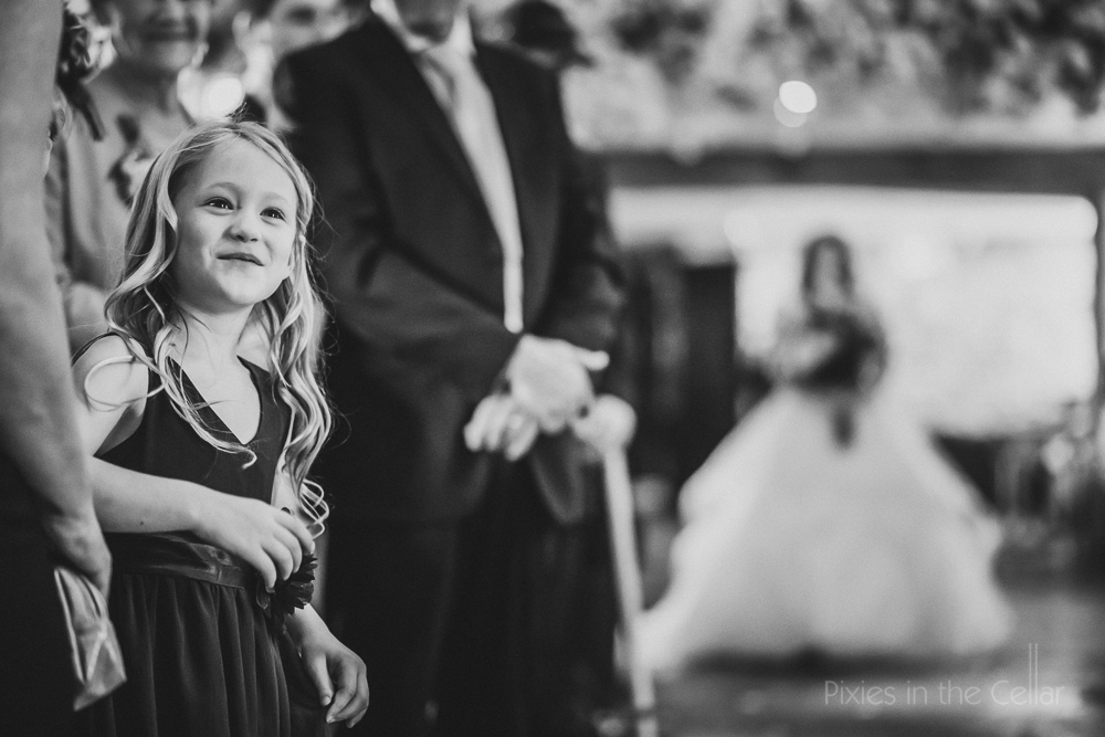 Le Petit Chateau wedding photography wedding ceremony guests