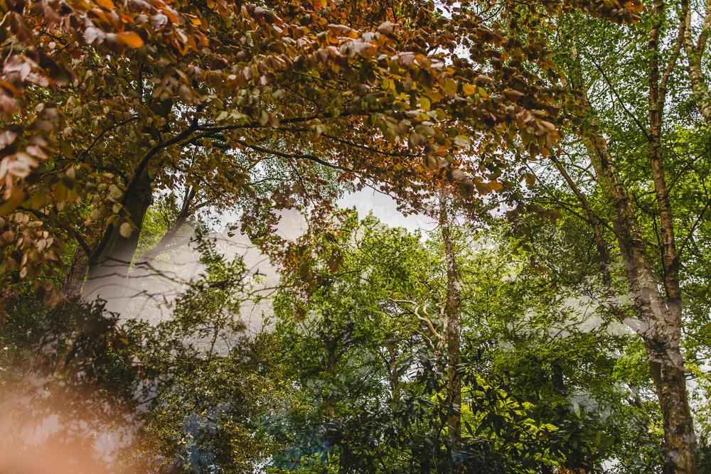 intimate woodland wedding venue